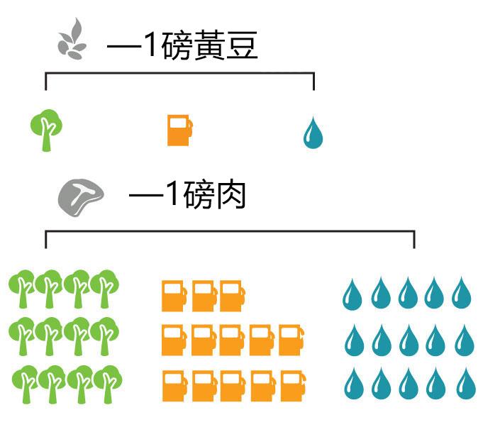 如何吃蛋奶素食或全素食来保护地球、抵抗气候变化、防止污染并节约自然资源。