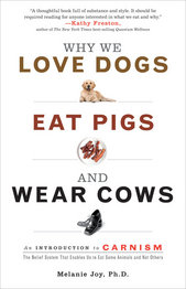 Carnism+bookcover.jpg