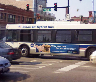 Chicago ad outside bus1.jpg