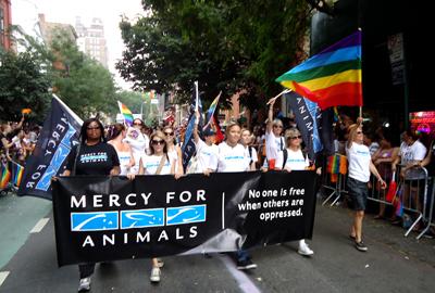 Thumbnail image for NewYorkPrideSite3.jpg