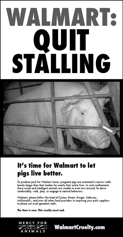 WalmartAd.png
