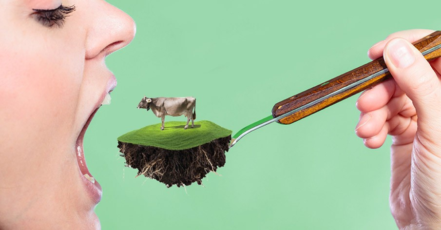 Pecuária: Para cada R milhão em receita, R milhões em prejuízos ambientais