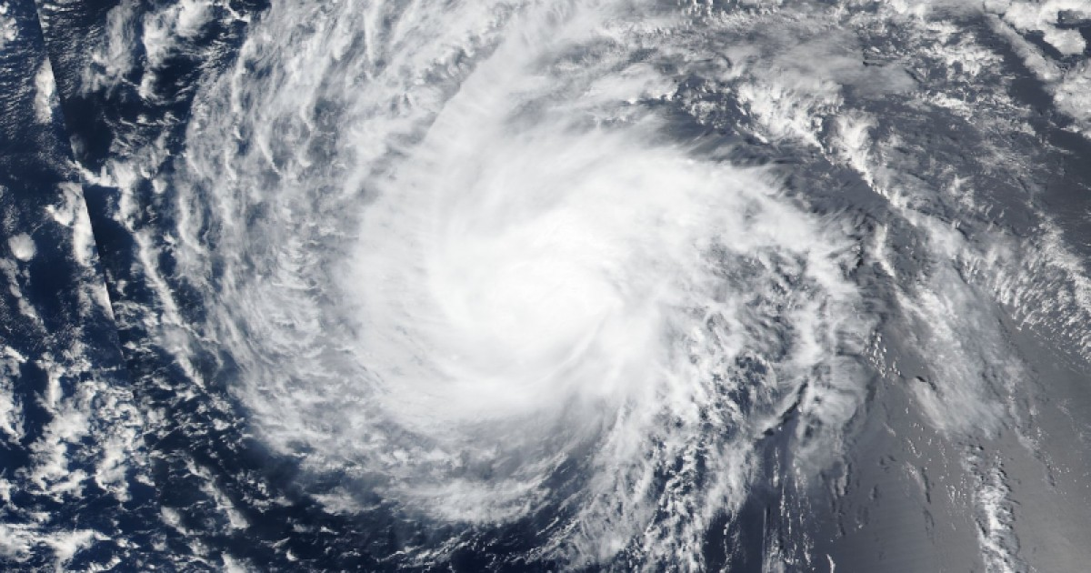Hurricane Florence Was Upgraded to Cat 4. Here's How Its Landfall Will Affect Farmed Animals
