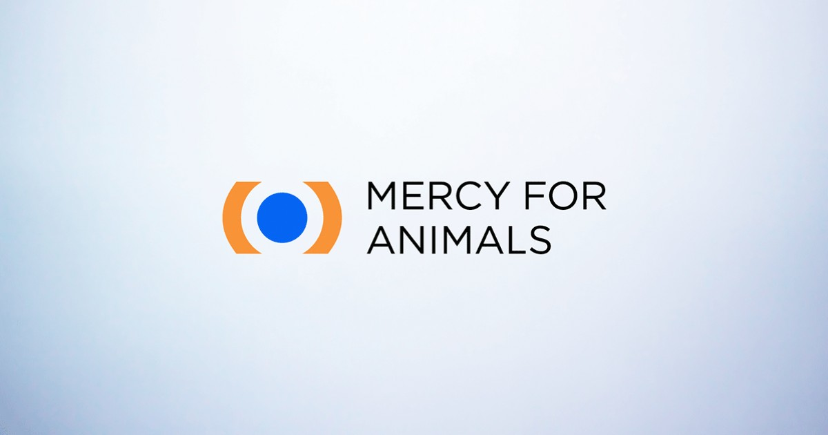 Mercy For Animals – World's Leading Farmed Animal Rights and