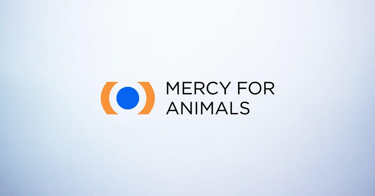 mercy to