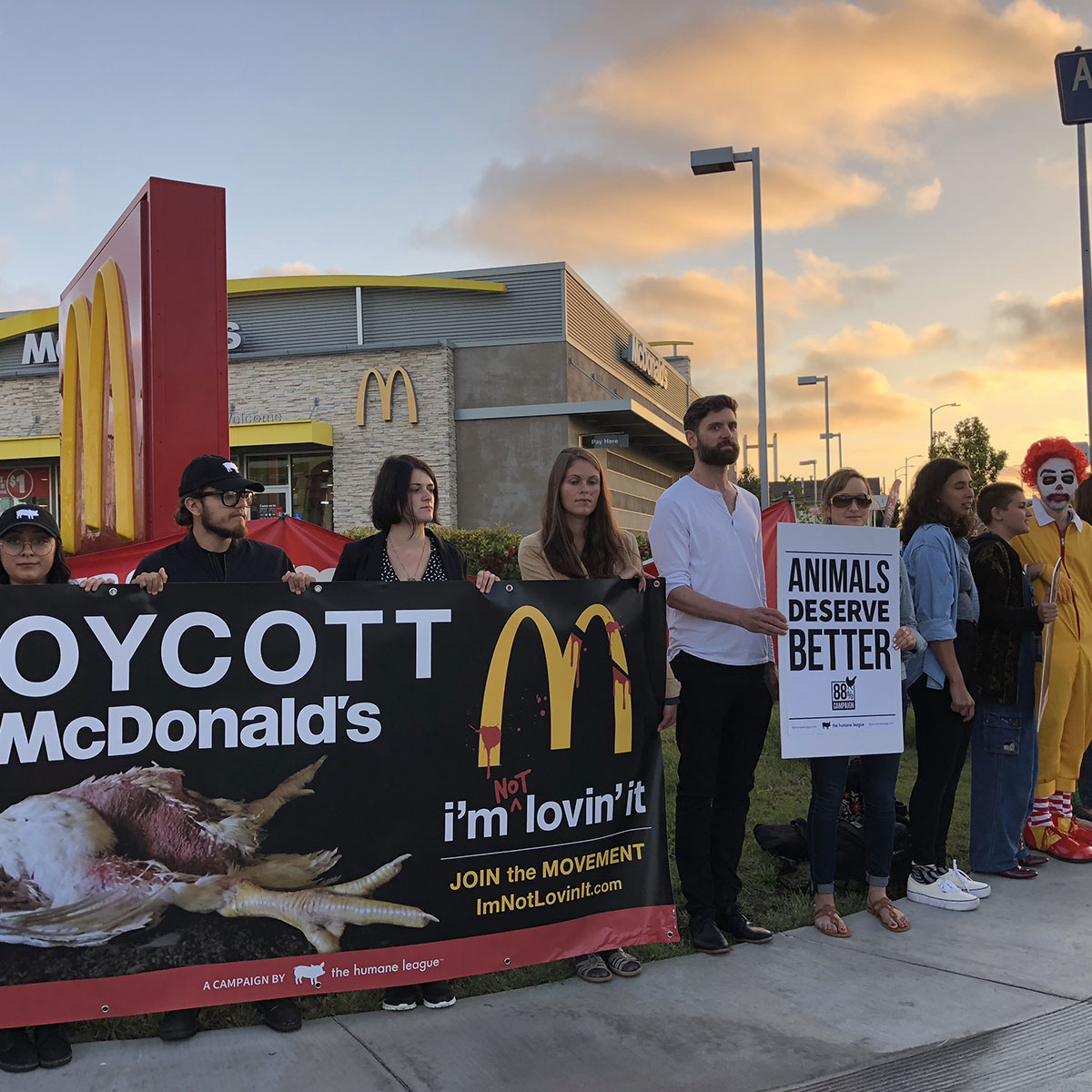 $250 funds a protest outside the headquarters of a company that abuses animals