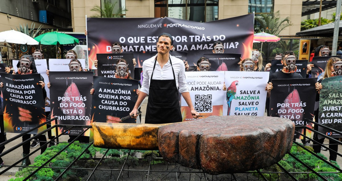 Mercy For Animals Activists Marched in São Paulo to Show the Truth Behind the Amazon Fires