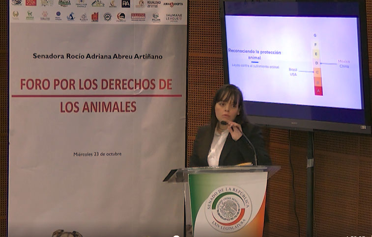Fabiola Balmori giving a presentation