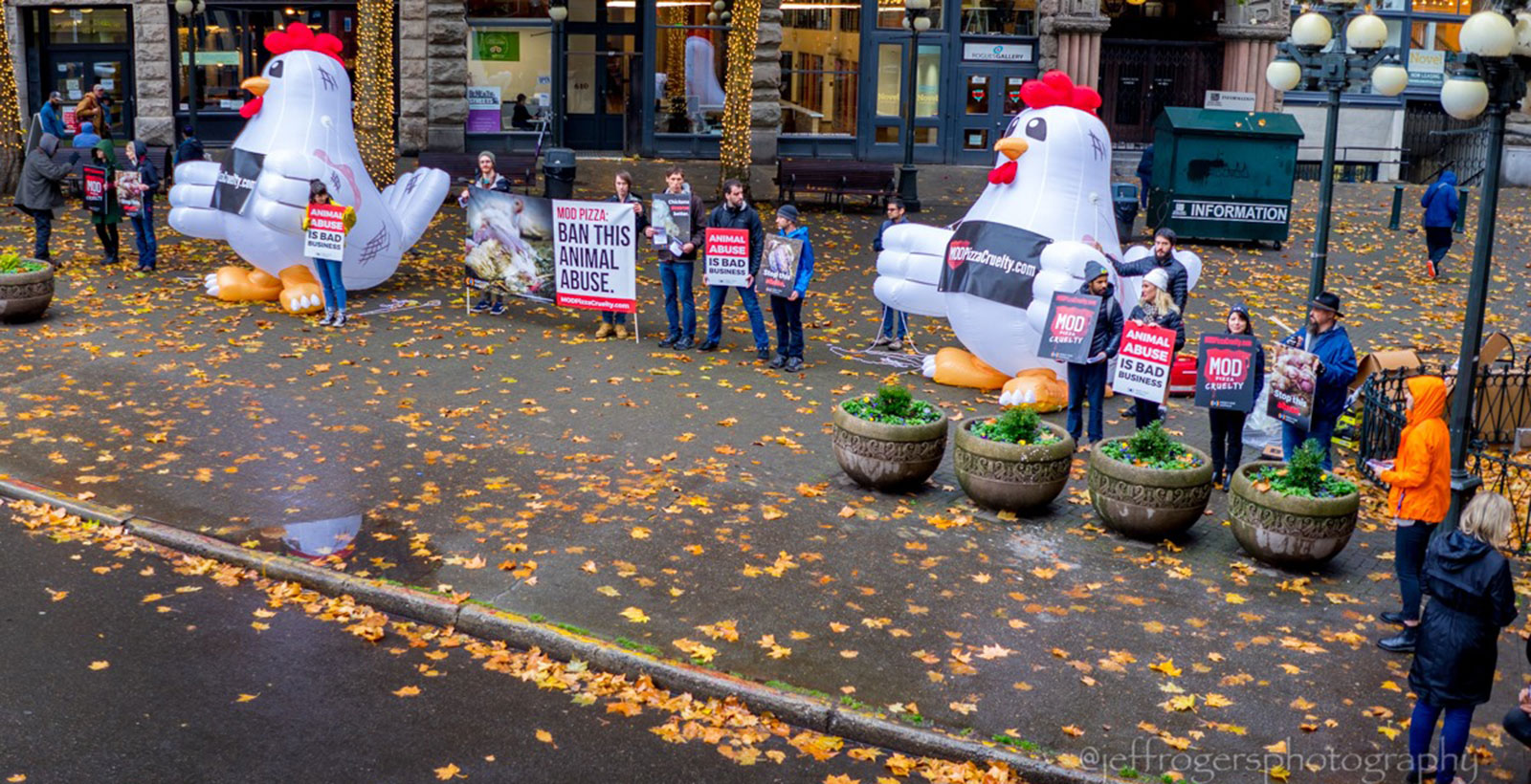 Activists protesting MOD pizza