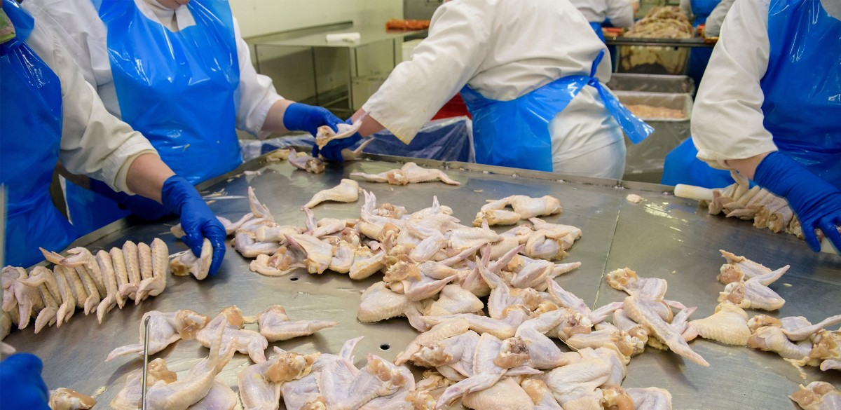 Foster Farms Poultry Plant Forced to Shut Down After Eight Worker Deaths