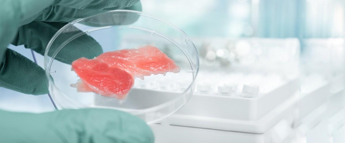 Decisão histórica: Singapura aprova o consumo de carne cultivada