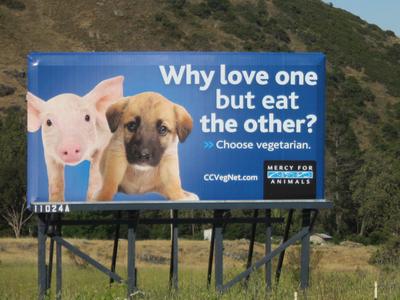 billboard2-thumb-400x300.jpg