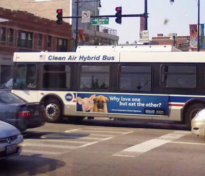 Chicago ad outside bus1.jpg