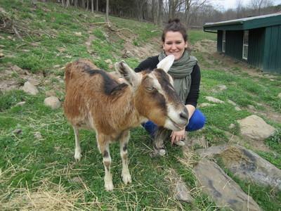 New York Road Trip to Catskill Animal Sanctuary - Mercy For