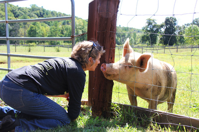 Animal Camp: Sanctuary Founder Shares Stories of Love, Hope